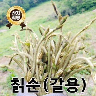 [산지직송/무료배송] 유기농 칡순 50g