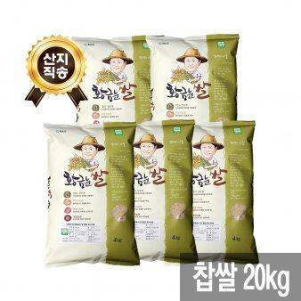 [산지직송 무료배송][황금눈쌀] 찹쌀 20kg (4kg x 5)